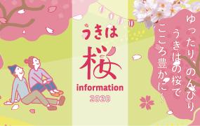 うきはの桜