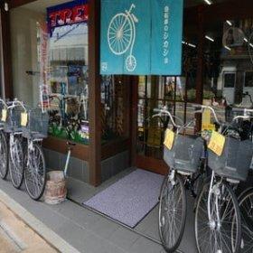自転車のシカショ