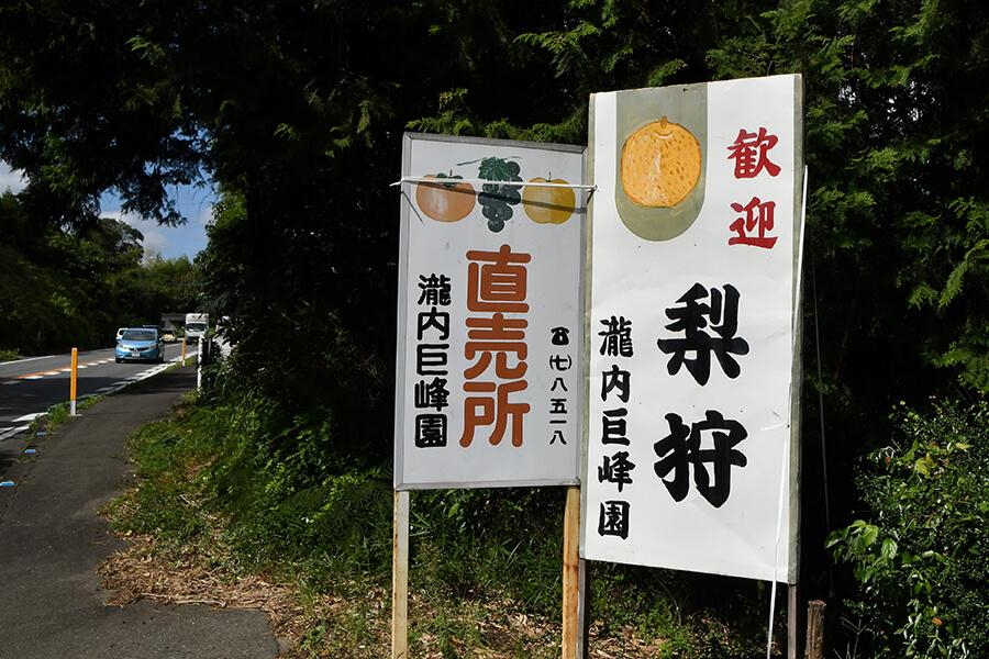 瀧内巨峰園