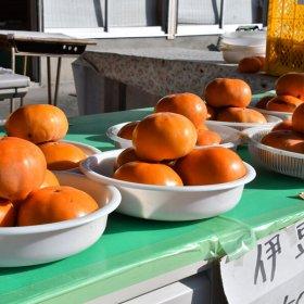 uchiyama03